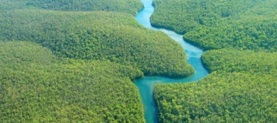 """Sinodo per l'Amazzonia. Il Papa: no ai """"Nuovi colonialismi"""", no al """"Fuoco appiccato in nome di interessi che distruggono"""""""