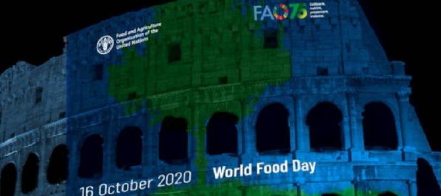 75° Fao, Papa Francesco: occorre un fondo mondiale per debellare la vergogna della fame
